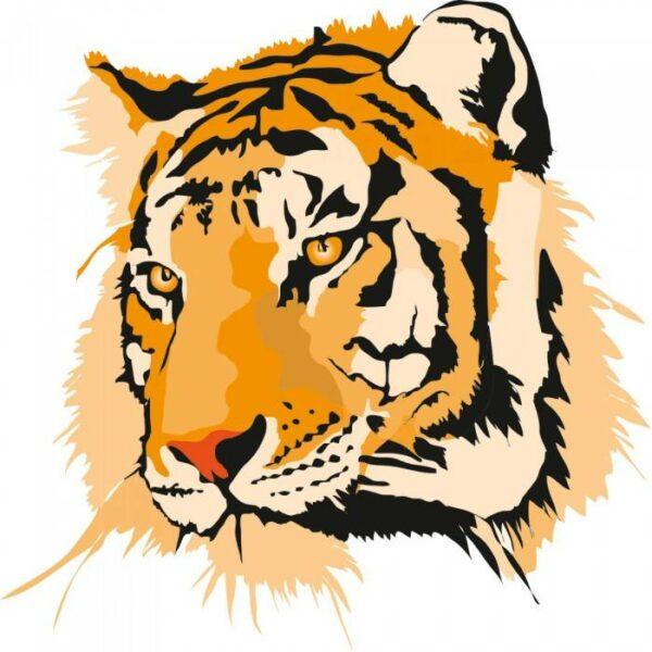 Постеры Тигр