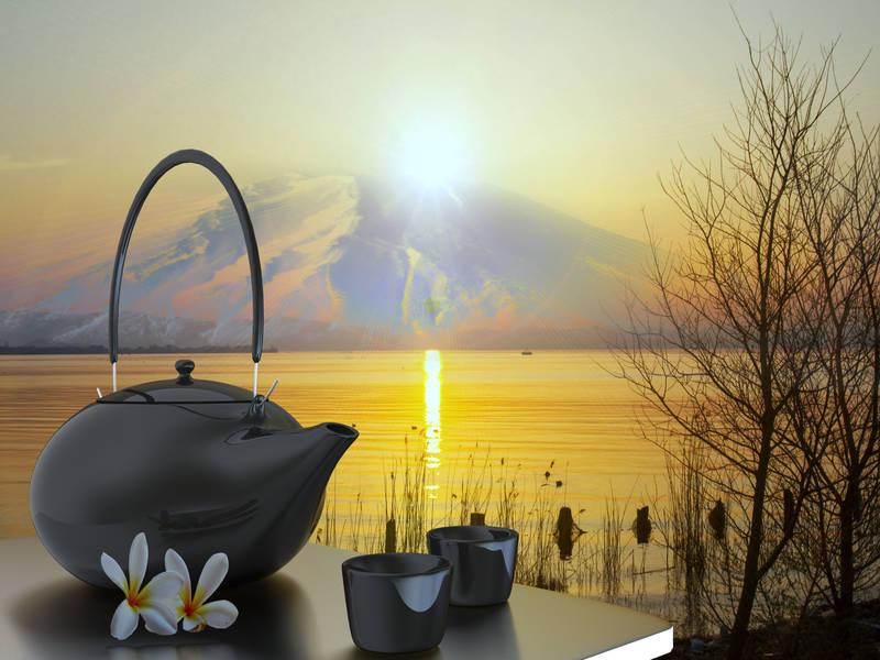 Рольшторы Чай на природе