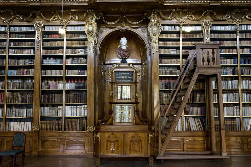 Рольшторы Библиотека, дизайн #05842