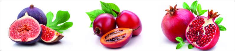 Макро фрукты, дизайн #05904