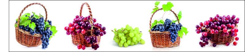 Виноград, дизайн #05978