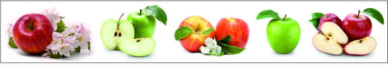 Яблоки, дизайн #05983