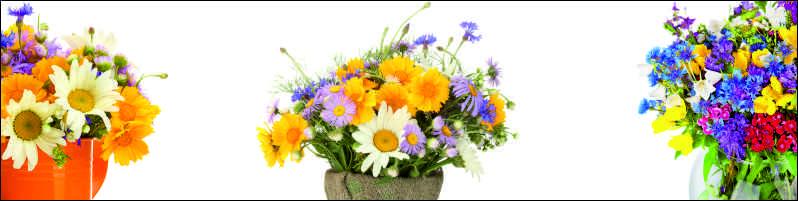 Полевые цветы, дизайн #05995