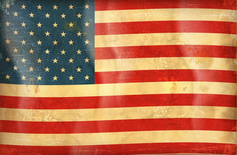 Японские панели Флаг Америки, дизайн #08862